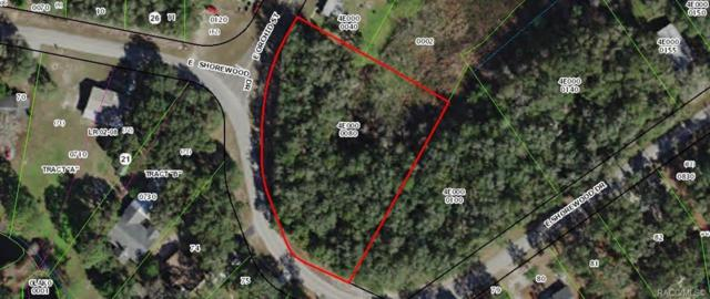 4015 E Shorewood Drive, Hernando, FL 34442 (MLS #782481) :: Plantation Realty Inc.
