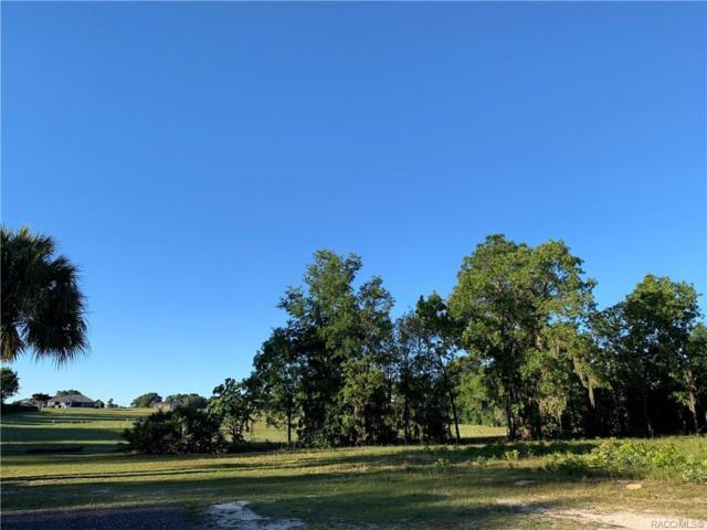 1736 N Edmonson Point, Hernando, FL 34442 (MLS #782511) :: Pristine Properties