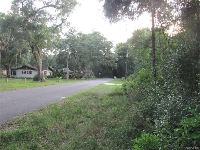 4744 S Rainbow Drive, Inverness, FL 34452 (MLS #782515) :: Plantation Realty Inc.