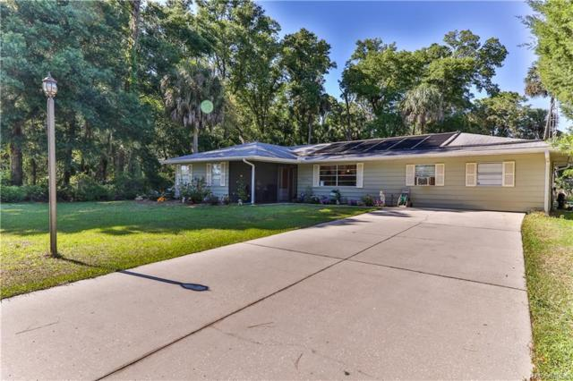 3855 N Turkey Oak Drive, Crystal River, FL 34428 (MLS #782546) :: Pristine Properties