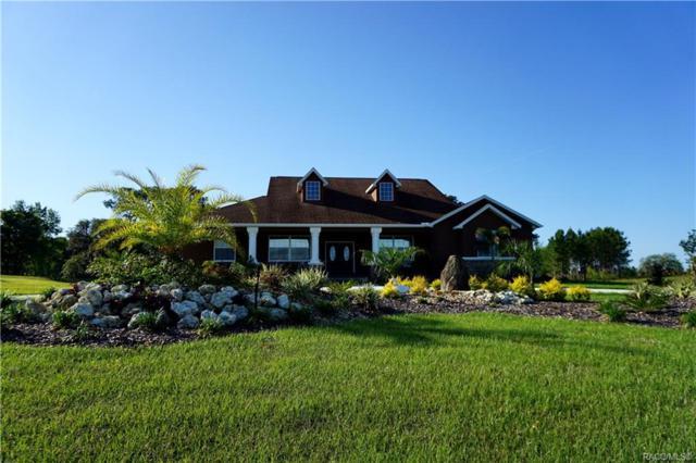 440 N Lake Shenandoah Loop, Inverness, FL 34453 (MLS #782548) :: Plantation Realty Inc.