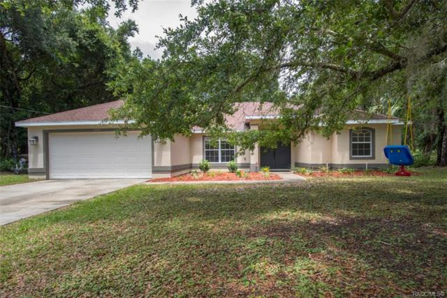 5547 N Watergap Point, Crystal River, FL 34428 (MLS #782564) :: Plantation Realty Inc.