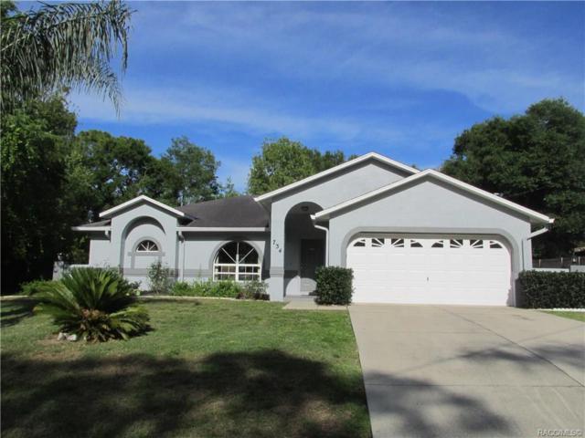 734 Newton Avenue, Inverness, FL 34452 (MLS #782574) :: Pristine Properties