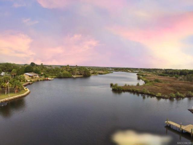 1291 S Ozello Trail, Crystal River, FL 34429 (MLS #782585) :: Plantation Realty Inc.