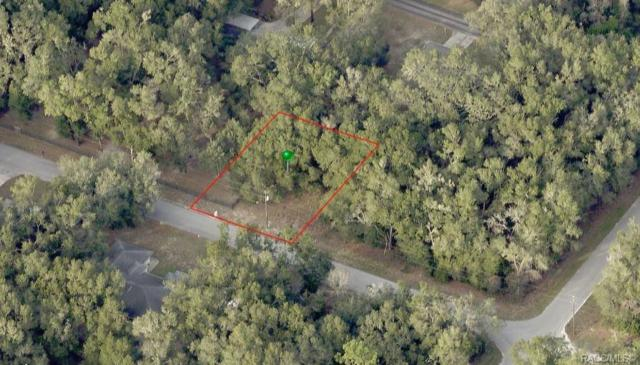 3473 E Lee Drive, Inverness, FL 34453 (MLS #782586) :: Pristine Properties