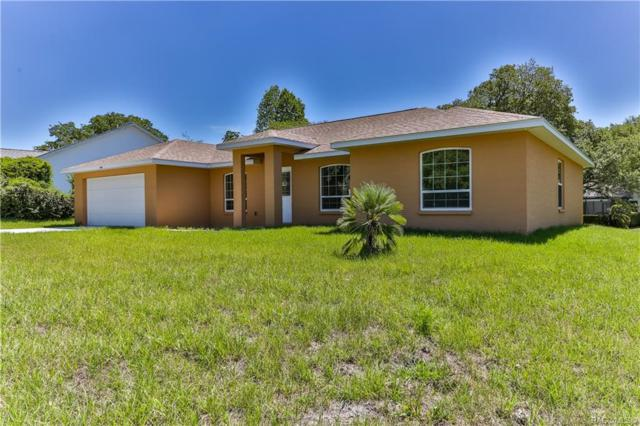 5176 W Pitch Pine Court, Lecanto, FL 34461 (MLS #782591) :: Plantation Realty Inc.