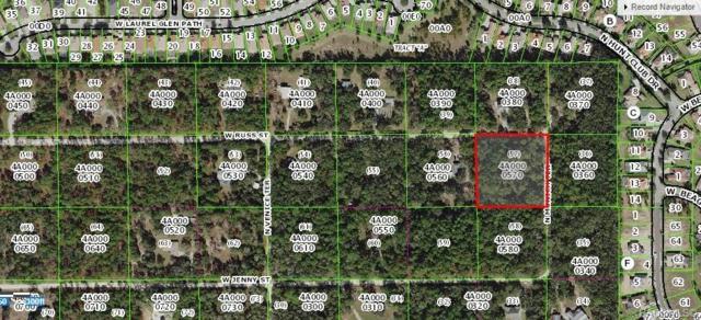 1154 N Munich Terrace, Lecanto, FL 34461 (MLS #782615) :: Plantation Realty Inc.