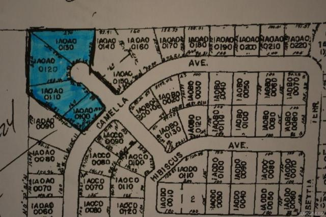29,30,40, & 50 S Teepie Terrace, Crystal River, FL 34429 (MLS #782648) :: Plantation Realty Inc.