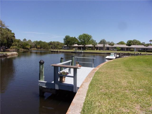 11582 W Kingfisher Court, Crystal River, FL 34429 (MLS #782666) :: Pristine Properties