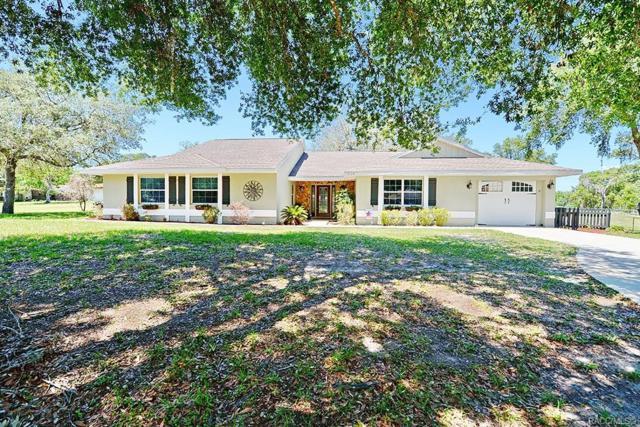3128 S Jean Avenue, Inverness, FL 34450 (MLS #782681) :: Plantation Realty Inc.