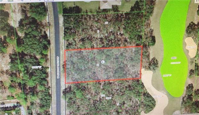 3791 W Shadow Creek Loop, Lecanto, FL 34461 (MLS #782698) :: Pristine Properties