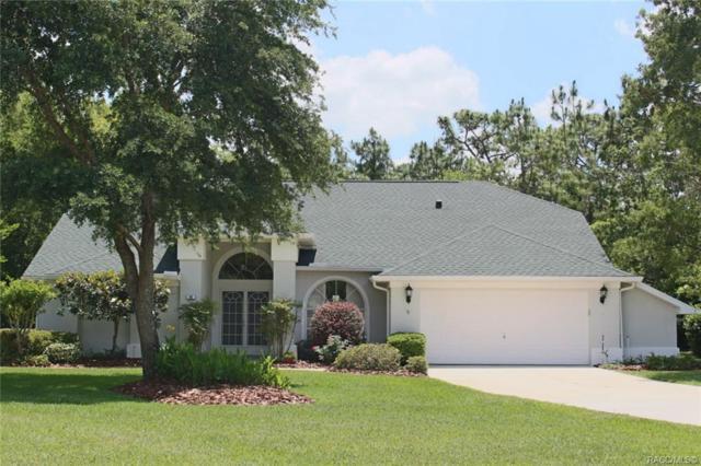 94 Oak Village Boulevard S, Homosassa, FL 34446 (MLS #782699) :: Pristine Properties