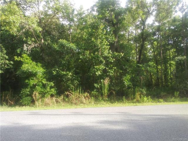 142 Daisy Street, Homosassa, FL 34446 (MLS #782720) :: Pristine Properties