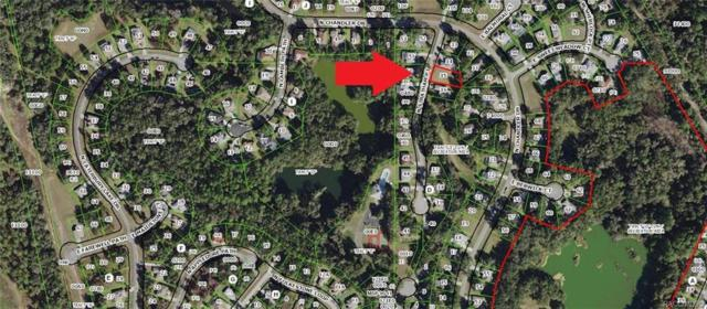 3117 N Stratham Point, Hernando, FL 34442 (MLS #782741) :: Pristine Properties