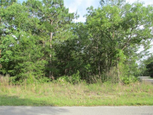 12 Saintpaulia Street, Homosassa, FL 34446 (MLS #782751) :: Pristine Properties