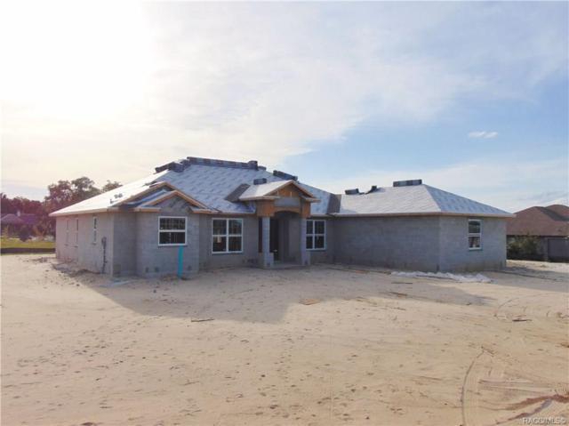 158 N Man O War Drive, Hernando, FL 34442 (MLS #782826) :: Plantation Realty Inc.