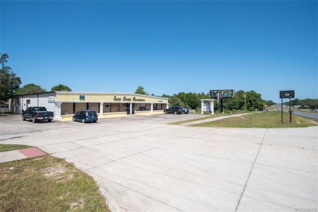 4100 W Gulf To Lake Highway, Lecanto, FL 34461 (MLS #782835) :: Pristine Properties