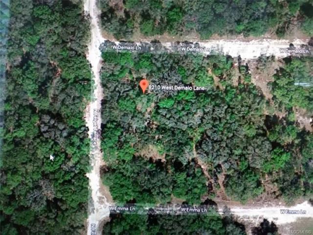 8210 Demaio Lane W, Crystal River, FL 34428 (MLS #782839) :: Plantation Realty Inc.