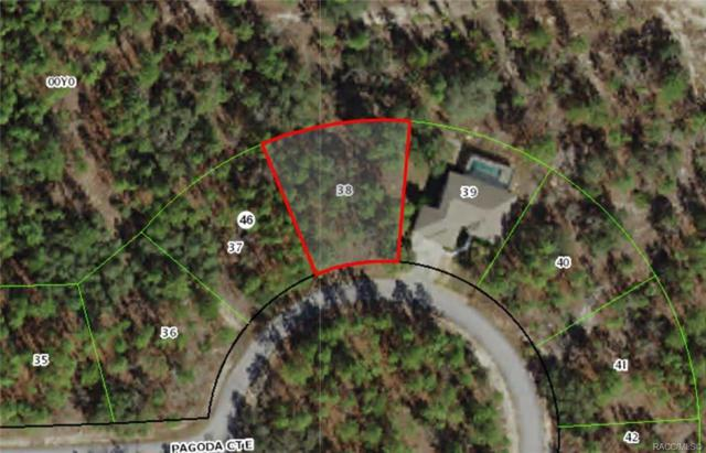 12 Pagoda Court E, Homosassa, FL 34446 (MLS #782841) :: Plantation Realty Inc.