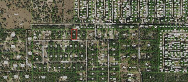 8765 W Sasso Lane, Crystal River, FL 34428 (MLS #782852) :: Plantation Realty Inc.