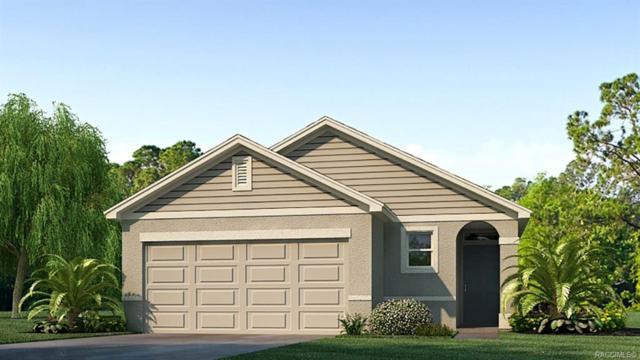 481 W Salinger Lane, Beverly Hills, FL 34465 (MLS #782856) :: Pristine Properties