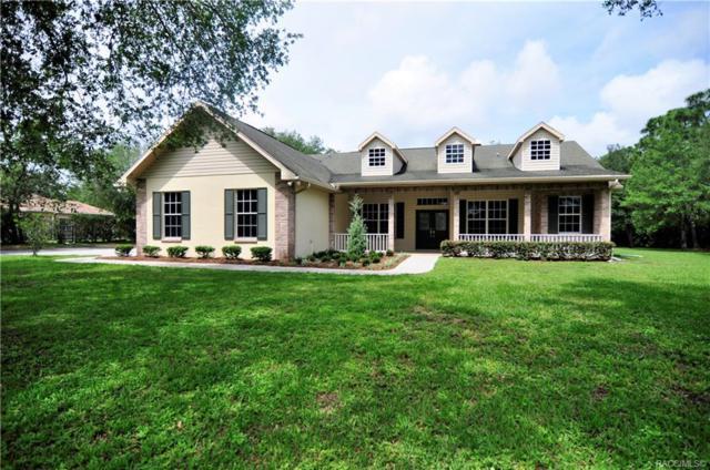 5281 Golddust Road, Brooksville, FL 34609 (MLS #782864) :: Pristine Properties
