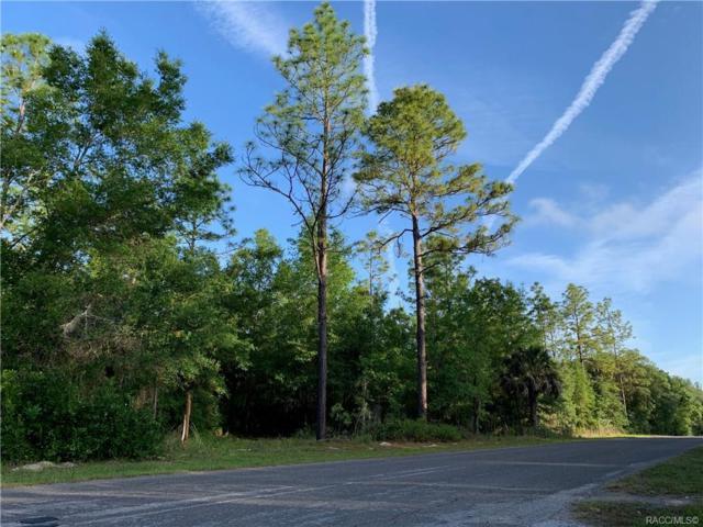 7836 N Ira Martin Avenue, Crystal River, FL 34428 (MLS #782903) :: Pristine Properties