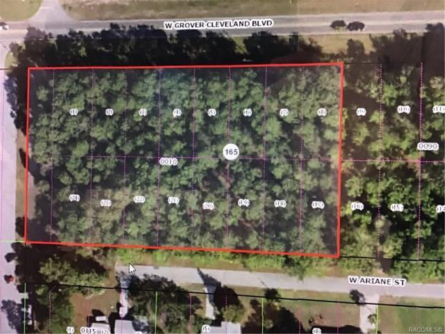 7880-4025 W Grover Cleveland - Missour Drive, Homosassa, FL 34448 (MLS #782913) :: Plantation Realty Inc.