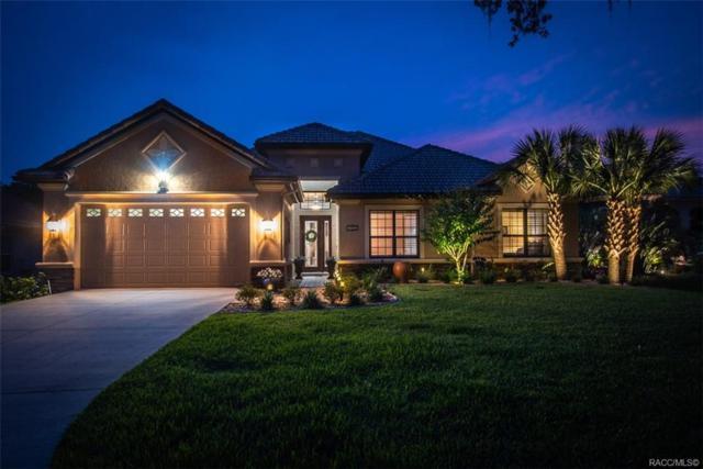 1462 N Ridge Meadow Path, Hernando, FL 34442 (MLS #782915) :: Pristine Properties