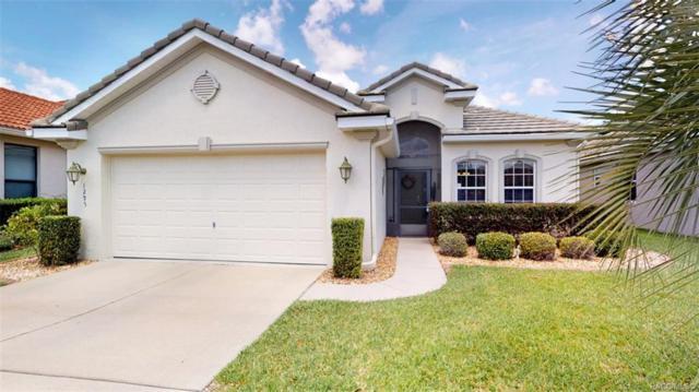 1295 W Skyview Crossing Drive, Hernando, FL 34442 (MLS #782922) :: Pristine Properties