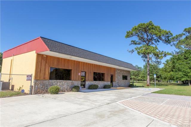 2211 E Norvell Bryant Highway, Hernando, FL 34442 (MLS #782923) :: Pristine Properties