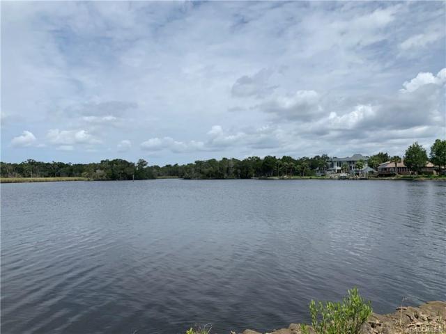 5024 S Prices Point, Homosassa, FL 34448 (MLS #782925) :: Plantation Realty Inc.