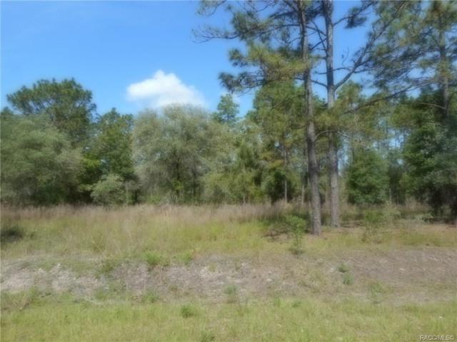 L 12 SW Big Tree Road, Dunnellon, FL 34431 (MLS #782953) :: Plantation Realty Inc.