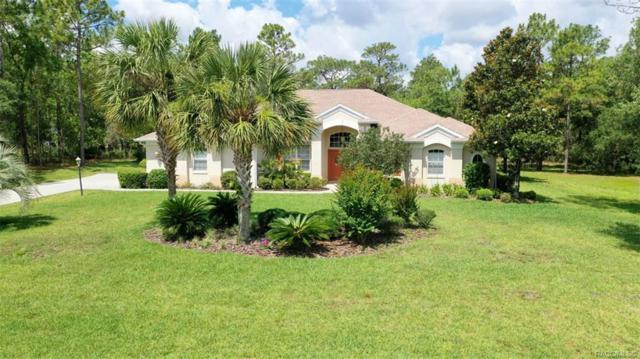 4628 N Allamandra Drive, Beverly Hills, FL 34465 (MLS #782985) :: Pristine Properties