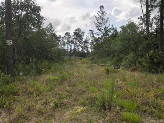 5274 W Dunklin Street, Crystal River, FL 34433 (MLS #782991) :: Plantation Realty Inc.