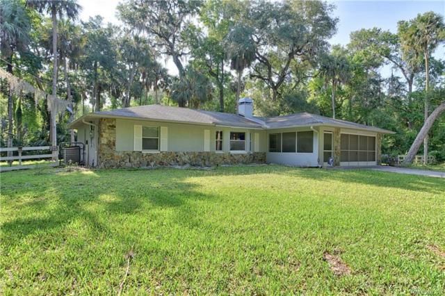 6425 E River Road, Hernando, FL 34442 (MLS #783004) :: Pristine Properties