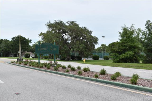 1295 E Bluebird Court, Hernando, FL 34442 (MLS #783014) :: Pristine Properties