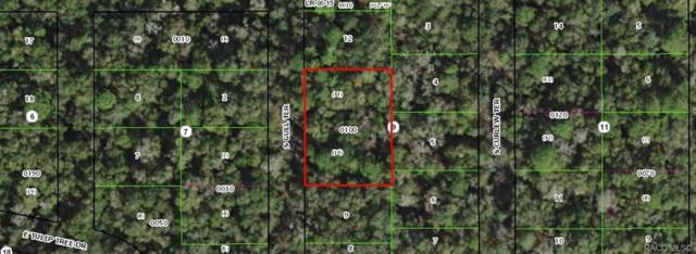 4015 S Gull Terrace, Inverness, FL 33450 (MLS #783019) :: Plantation Realty Inc.