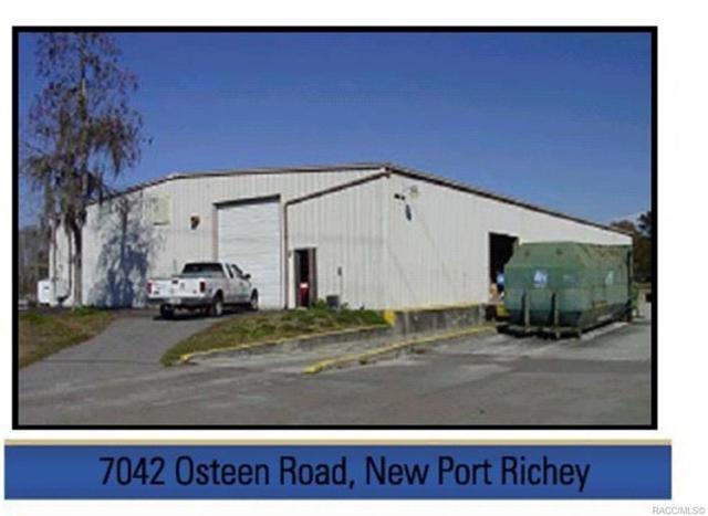 7030 Osteen Road, Newport Richey, FL 34653 (MLS #783021) :: Pristine Properties