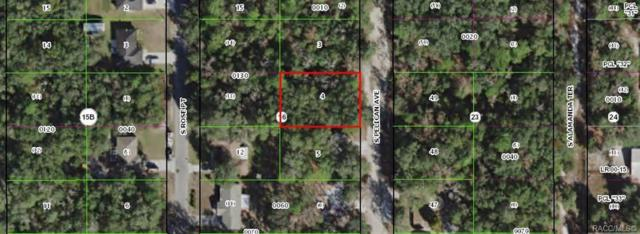 3366 S Pelican Avenue, Inverness, FL 34450 (MLS #783047) :: Plantation Realty Inc.
