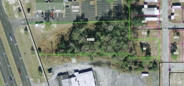 0 SE Hwy 19 Highway, Crystal River, FL 34429 (MLS #783053) :: Plantation Realty Inc.