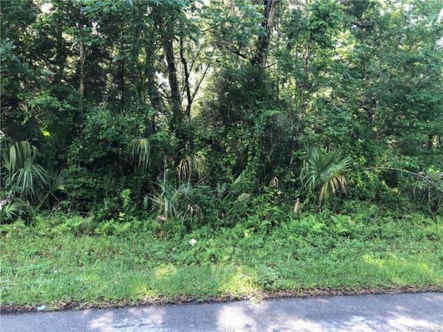 10268 W Misty Rose Street, Homosassa, FL 34448 (MLS #783075) :: Plantation Realty Inc.