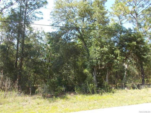1337 E Bismark Street, Hernando, FL 34442 (MLS #783084) :: Plantation Realty Inc.