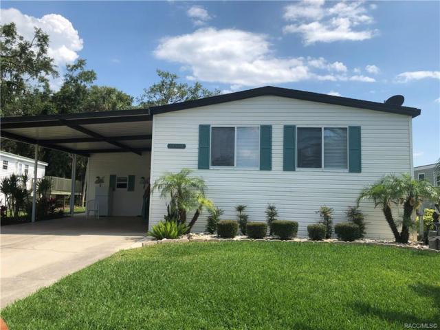 11560 W Clearwater Court, Homosassa, FL 34448 (MLS #783095) :: Pristine Properties
