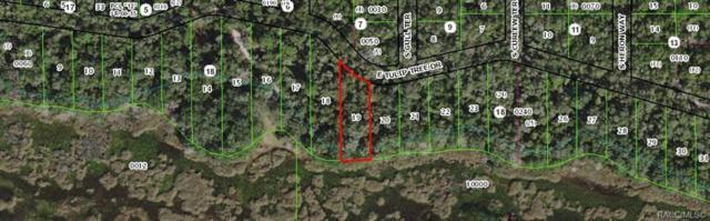 9924 E Tulip Tree Drive, Inverness, FL 33450 (MLS #783099) :: Plantation Realty Inc.