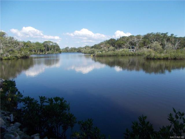 14710/14690 W Black Creek Drive, Crystal River, FL 34429 (MLS #783100) :: Plantation Realty Inc.
