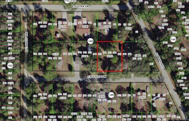 3655 E Bulldog Lane, Inverness, FL 34453 (MLS #783102) :: Pristine Properties