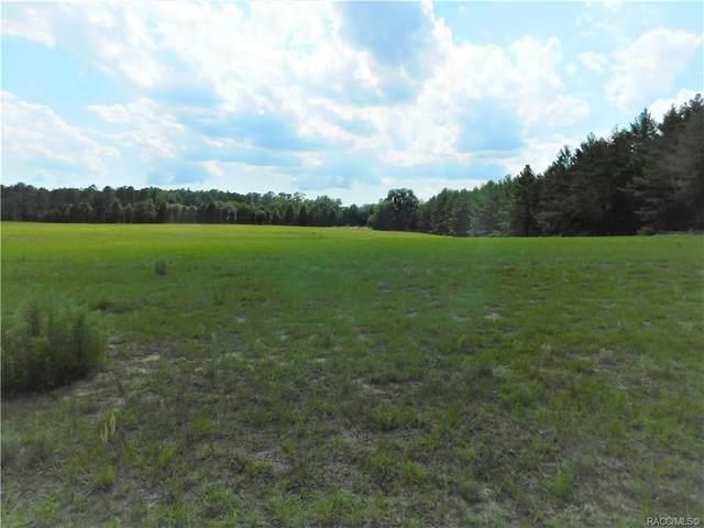 10624 S Brightstar Avenue, Floral City, FL 34436 (MLS #783114) :: Plantation Realty Inc.