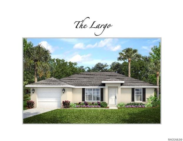 9121 N Satinwood Terrace, Citrus Springs, FL 34433 (MLS #783126) :: Plantation Realty Inc.
