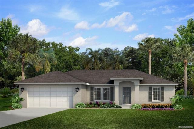 8034 N Creek Way, Citrus Springs, FL 34434 (MLS #783135) :: Plantation Realty Inc.